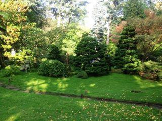 Jardin japonais 1 comp
