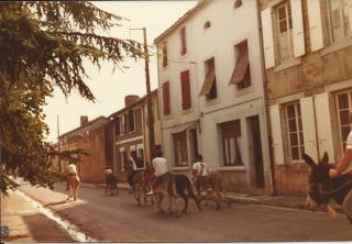 1 1982 course aux ânes lundi de fête 1