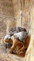 2e ét sculpt 3 départ angle arc voûte MS rogné